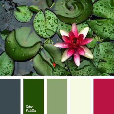 Color Of Lotus Flowers Color Palette Ideas