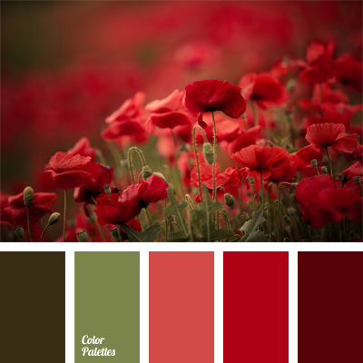 Maroon color palette ideas - Color schemes with maroon ...