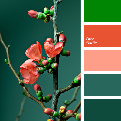 Light Coral Color Palette Ideas