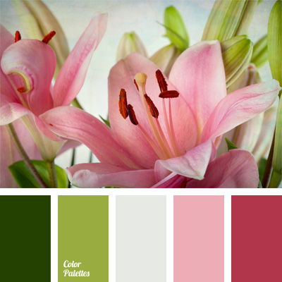 Pastel green and shades of pink color palette ideas Good color combination for pink
