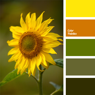 army green | Color Palette Ideas