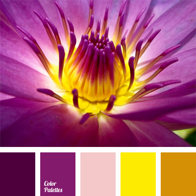 violetred Color Palette Ideas