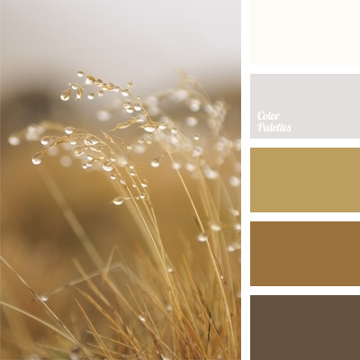 Monochrome Palette Of Brown Color Palette Ideas