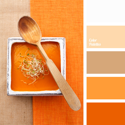 Shades Of Orange warm shades of orange | color palette ideas