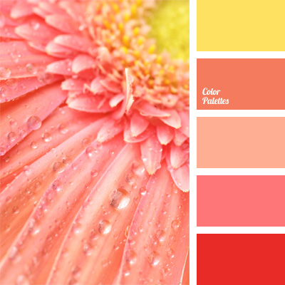 Pink monochrome color palette color palette ideas Good color combination for pink
