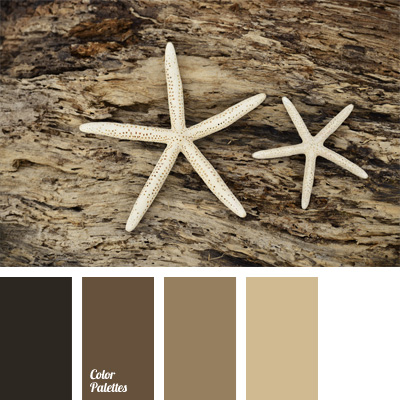 Brown Monochrome Palette Color Palette Ideas