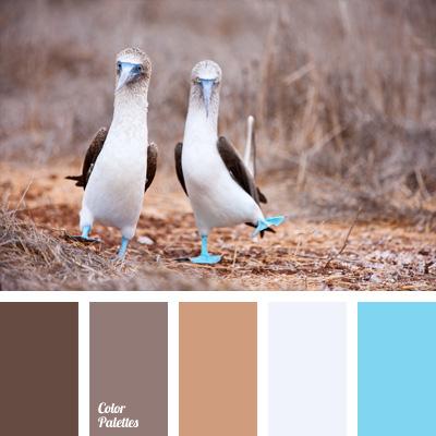 Color Palette 187