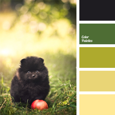forest green color color palette ideas