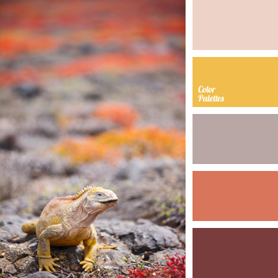 color-palette-222