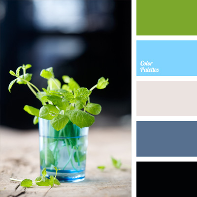 color-palette-223