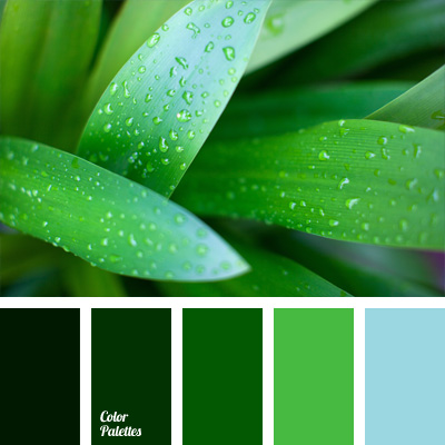 Dark Spring Green Color Palette Ideas