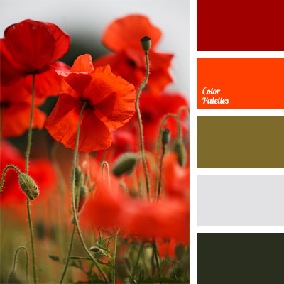 color palette 234