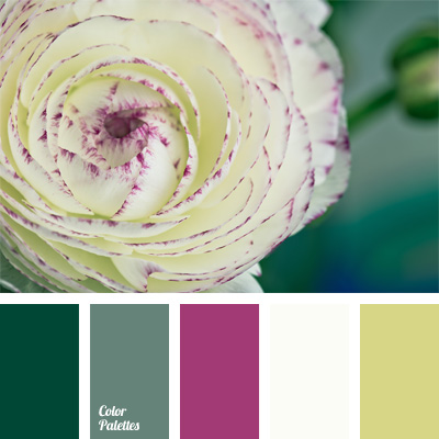 color-palette-239
