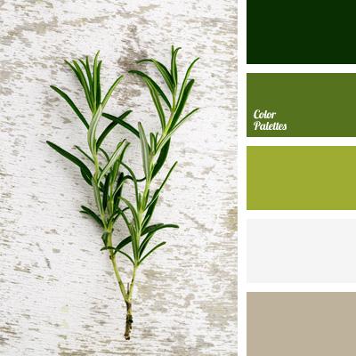 Color Palette 249