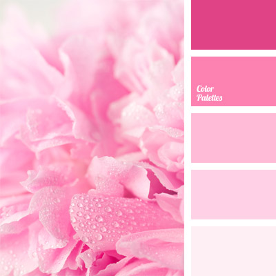 Rose Color Color Palette Ideas: good color combination for pink