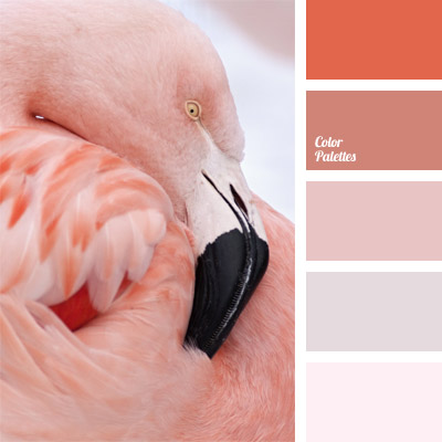 http://colorpalettes.net/wp-content/uploads/2014/07/cvetovaya-palitra-288.jpg