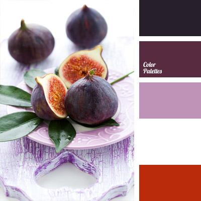 Plum Color Tag Color Palette Ideas