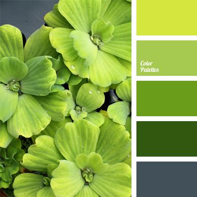Color Palette 384