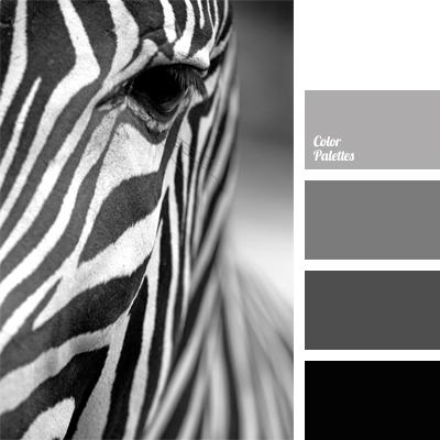 Gray Color Palette