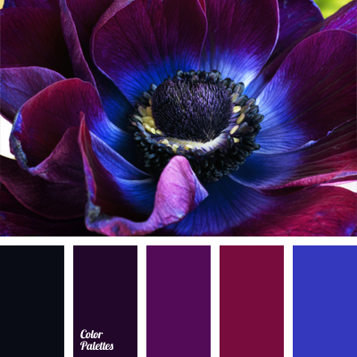 violet dark blue color color palette ideas