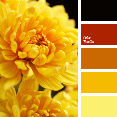 amber | color palette ideas