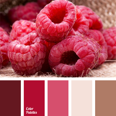 color of raspberry | Color Palette Ideas