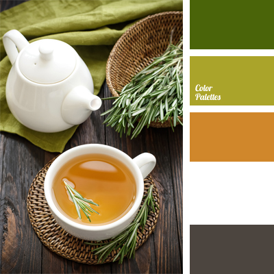 Color Of Rosemary