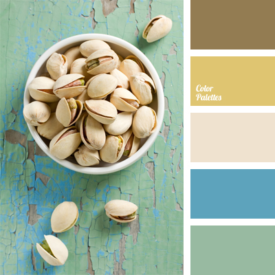 Color Palette 479