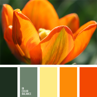Combination of green and orange color palette ideas - Combination of orange color ...