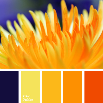 Color Palette 521 Blue And Yellow