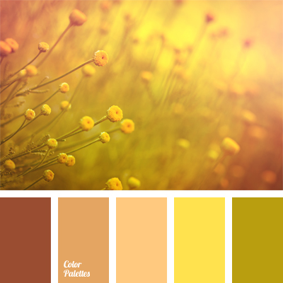 Color Palette 531