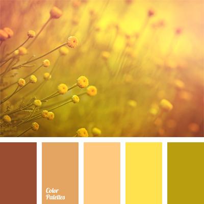 Orange Brown Color Color Palette Ideas