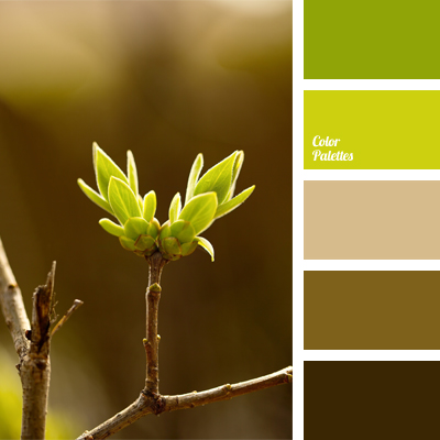 shades of green and brown | Color Palette Ideas