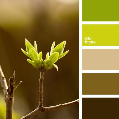 Color Palette #570
