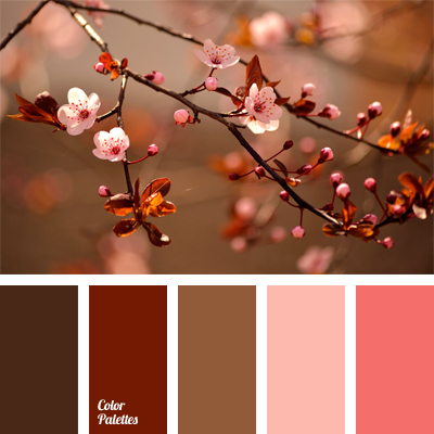 Color Palette 574 Color Palette Ideas