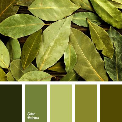 Color Palette 575