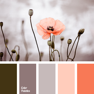 Warm color scheme color palette ideas - Peach and red combination ...