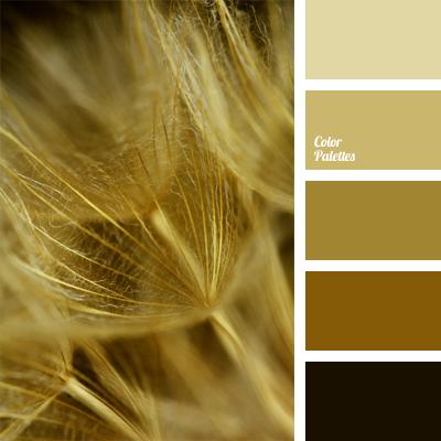 Color Palette 618