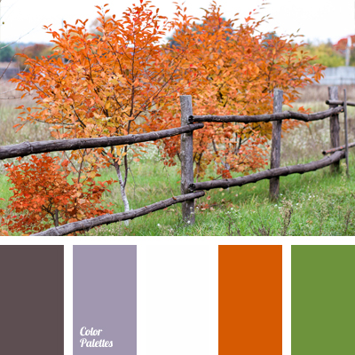Bright Color Scheme For Decorating Apartments
