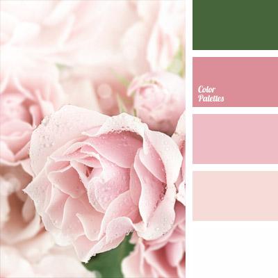 Color Palette 713