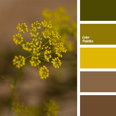 Color palette 722 for Olive green colour combination