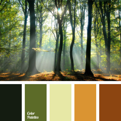 color of thick forest color palette ideas
