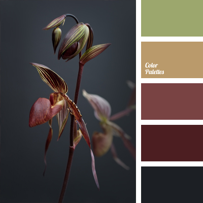 Color of burgundy orchids color palette ideas - Maroon and grey color scheme ...