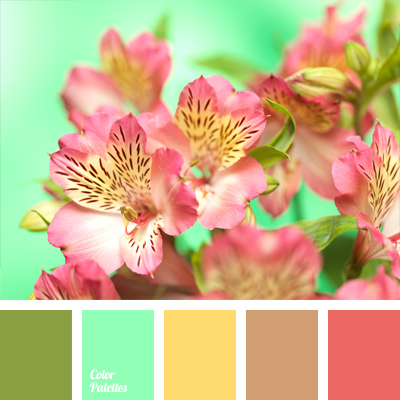 Color Palette 767