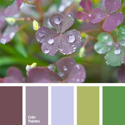 color palette 772 - Clover Color