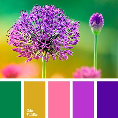 Bright Colors Color Palette Ideas