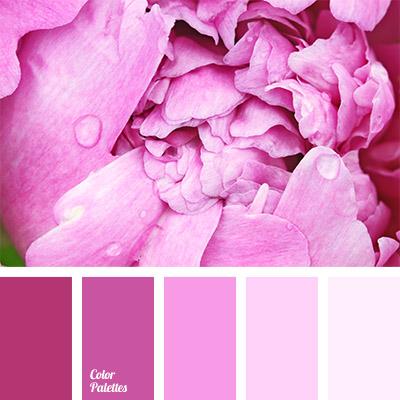 Color Palette 779