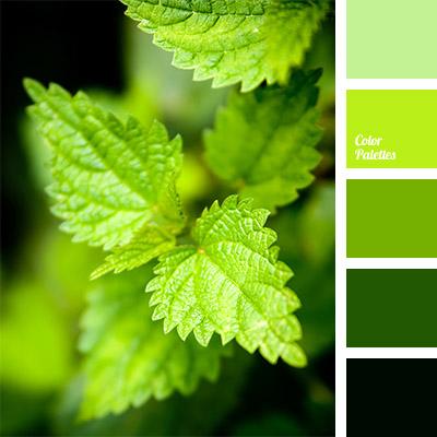 http://colorpalettes.net/wp-content/uploads/2014/12/cvetovaya-palitra-782.jpg