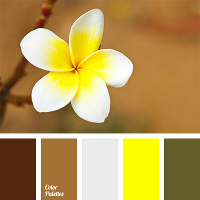 Color Palette 793
