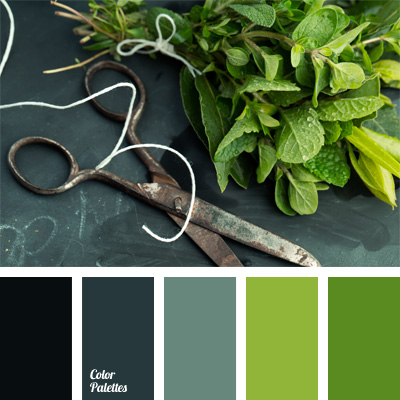Color Palette 830 Color Palette Ideas